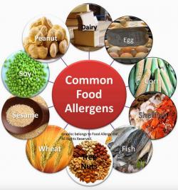 best food sensitivity test