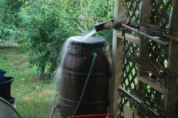 the rain barrel effect