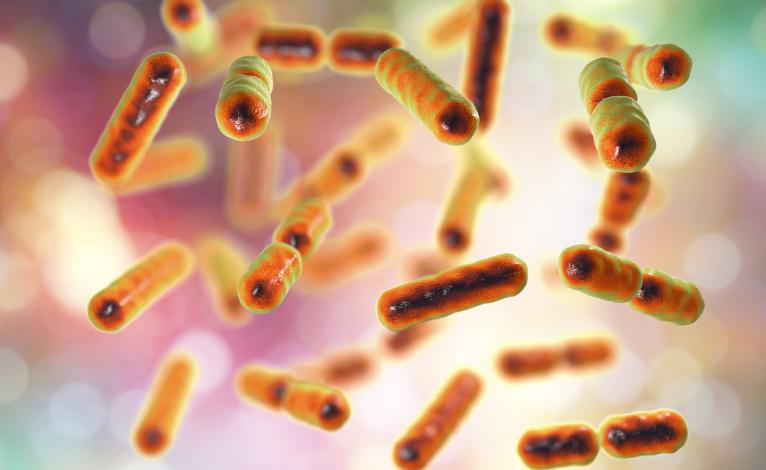 Gut Bacteria Assessment